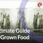 the ultimate guide to lab grown food